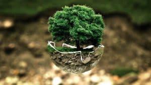 שיפוצים בבניה ירוקה
